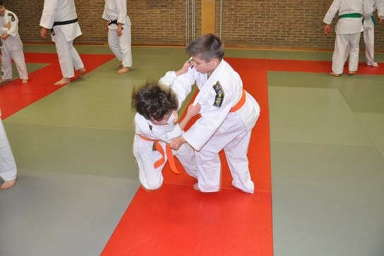 grote weergave judo (2)